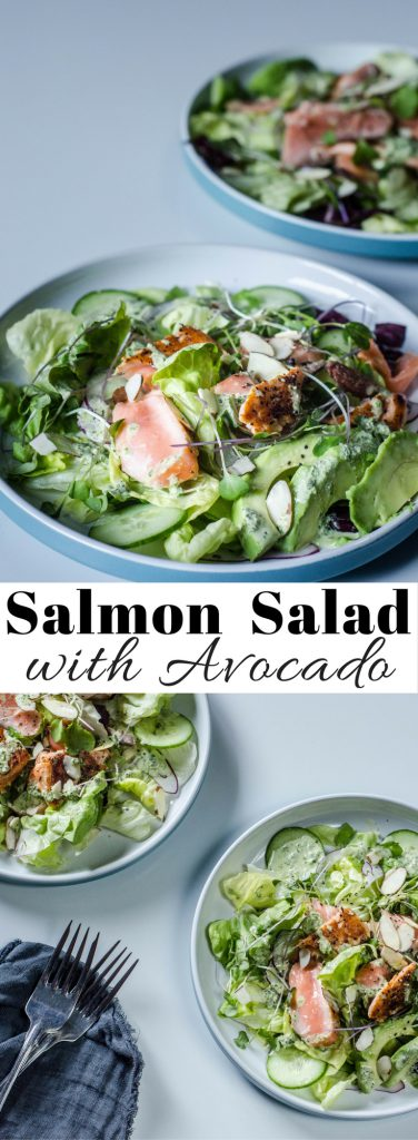Salmon Salad with Avocado long pin