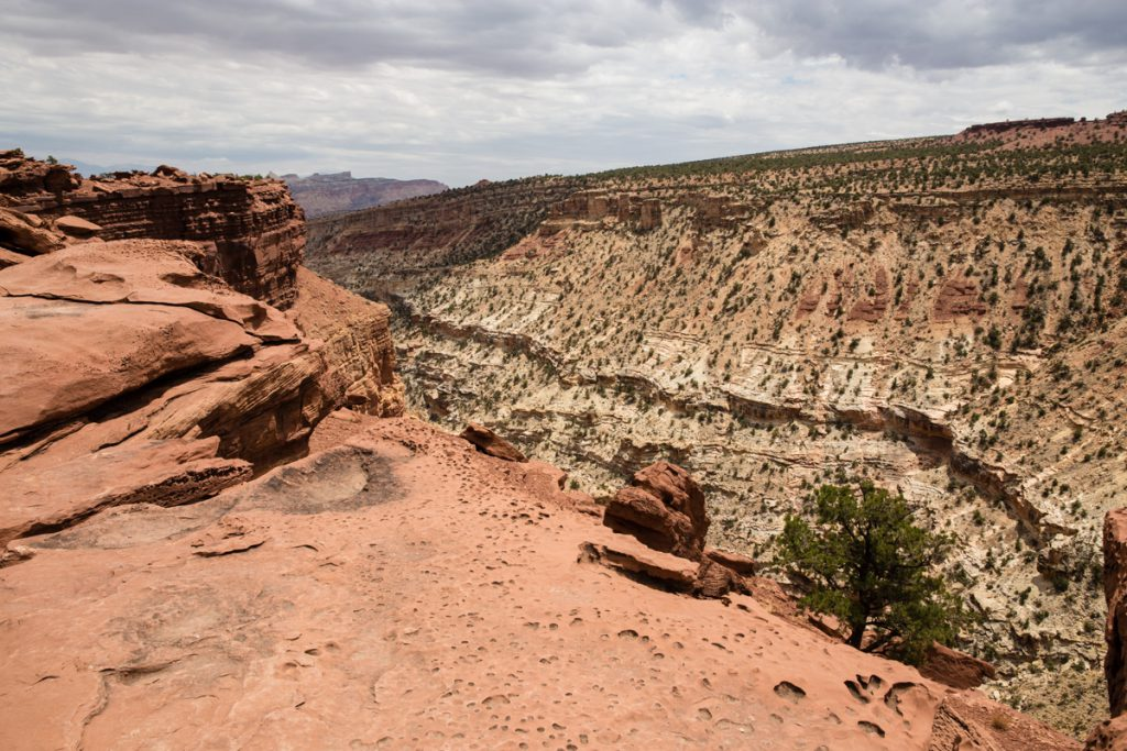Capitol Reef National Park 2